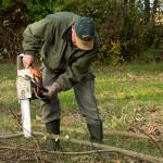 Einige Baumarbeiten sind ebenfalls zu erledigen, die Motorsäge hat Uli fest im Griff.