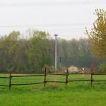 Der Strommast mit dem Storchenpaar von der anderen Seite aus gesehen.