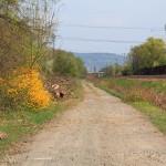 Wanderweg zwischen Waldgebiet und Bahnlinie