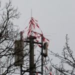 22.03.18 Das Nest wurde am Vortag nachmittags entfernt.