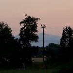 19) Das Kilianstädter Storchenpaar auf dem 2. Storchenmast