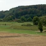 1) Blick in die Bornwiesen
