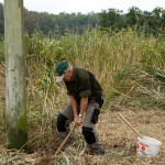 4) Um den Mast wird etwas aufgegraben.