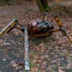 """6. Sie steht stellvertretend für die gefährdete """"Rote Ameise""""."""