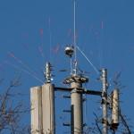 26.02.19 Funkmast, der anfängliche Nestbau wurde entfernt, neu aufgerüstet