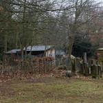 19) Jüdischer Friedhof Büdesheim